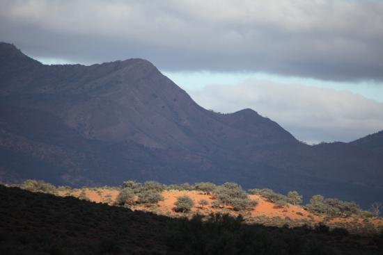 Flinders Ranges National Park: Ranges late afternoon heading south on main highway