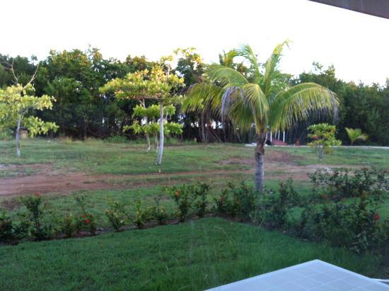 Memories Caribe Beach Resort: tout près de la mer