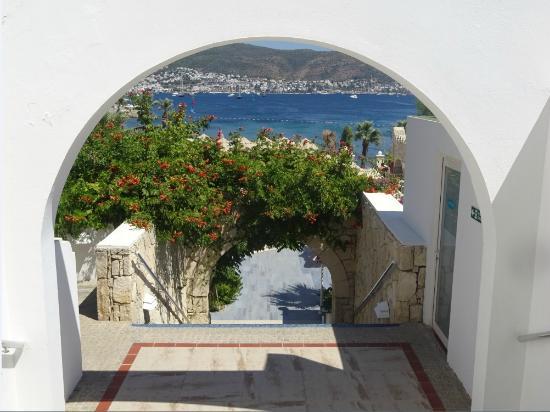Salmakis Resort & Spa: escalier menant piscine, plage et restaurant