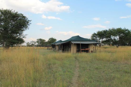 Mara Under Canvas Tented Camp: camp