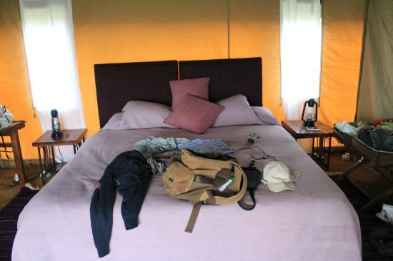 Mara Under Canvas Tented Camp: room