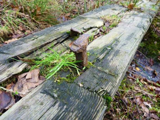Beacon Wood Country Park: Old sleeper for rail track