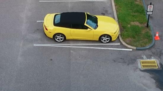 International Drive: Upgraded car rental
