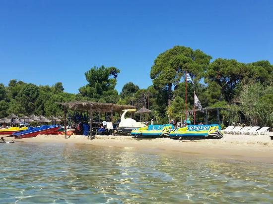 Koukounaries Beach: K 1
