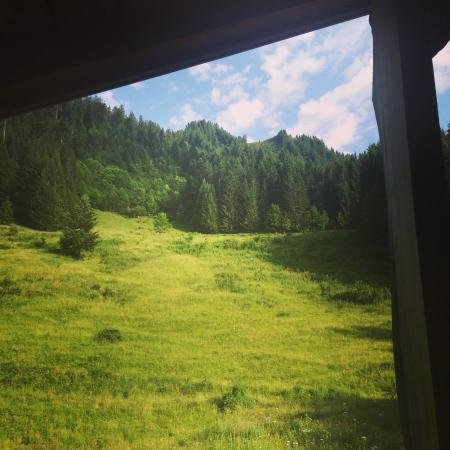 Le Grand Joux: View out the window