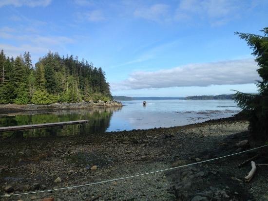 Mackay Whale Watching: arriva la barca!