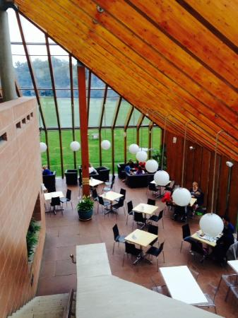 The Burrell Collection: Claro