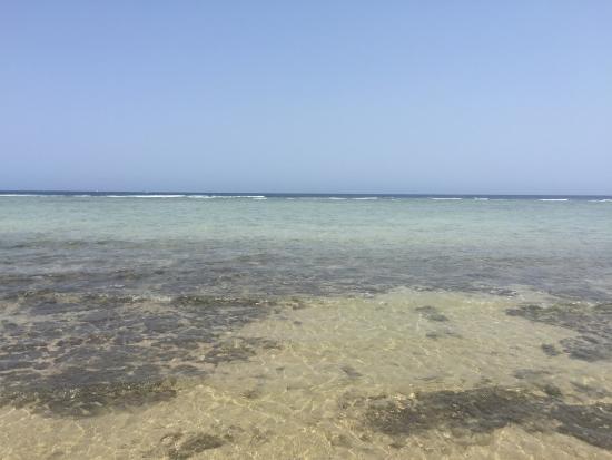 Paradise Club Shoni Bay Resort: photo6.jpg