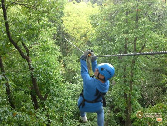 Common Ground Canopy Tours: I'm zipping across a 800' line.
