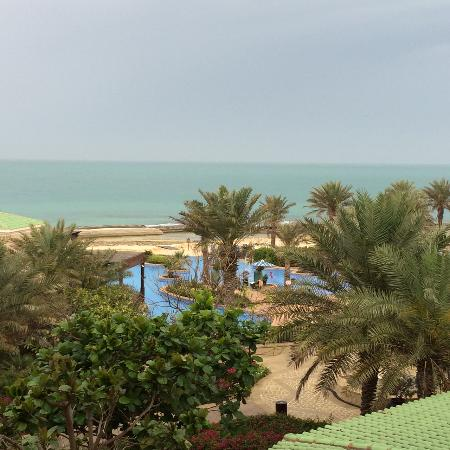 Anantara Desert Islands Resort & Spa: view from balcony