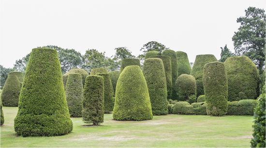 Packwood House: The Yew Garden Topiary
