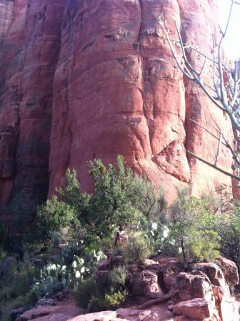 Cathedral Rock: photo6.jpg