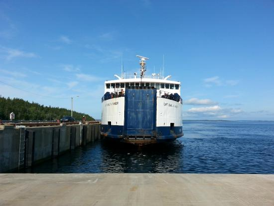 McCarthy's Party - Day Tours: Fogo Ferry