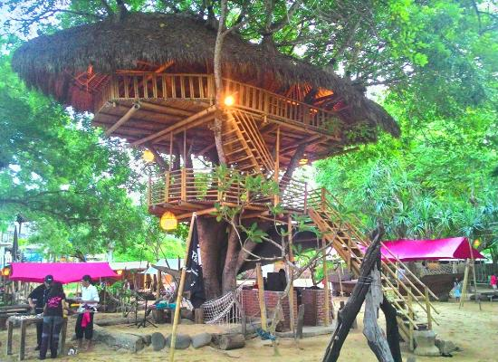 The Pirates Bay Bali: Tree House