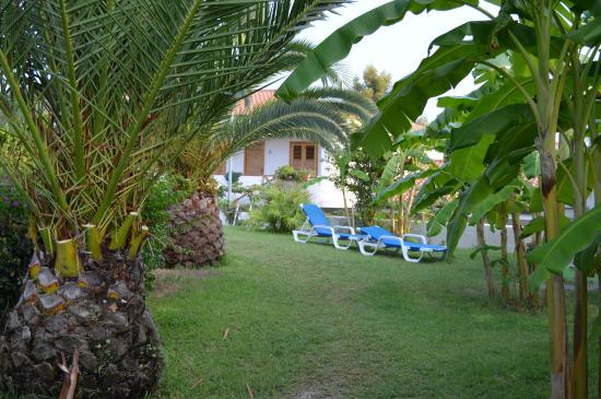 Costa Real Tropea: giardino