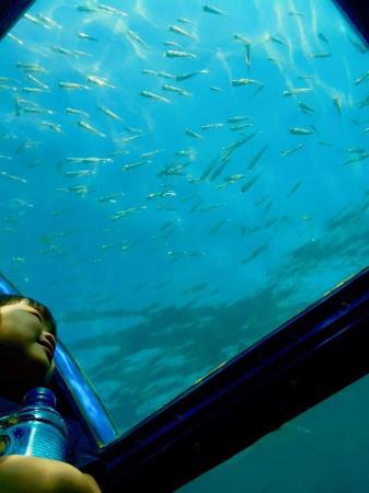 Putri Island Resort Hotel: photo3.jpg