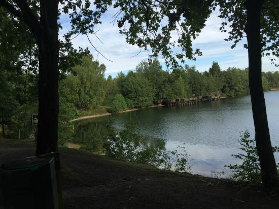 Center Parcs - De Vossemeren: Lake