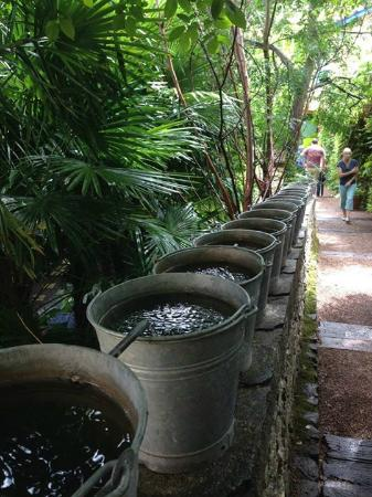Jardin des Paradis: Innovative irrigation