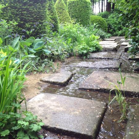 Jardin Agapanthe: Les dalles humides