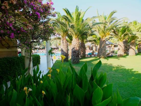 Hotel Samara: Jardins