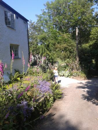Probus, UK: Outside of the cottage