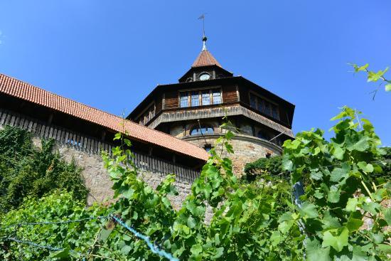 Esslinger Burg: The burg and walls