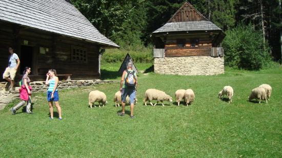 Vratna dolina: Slovenská vesnička