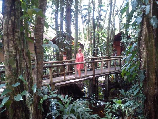 Evergreen Lodge: Caminos de las cabañas