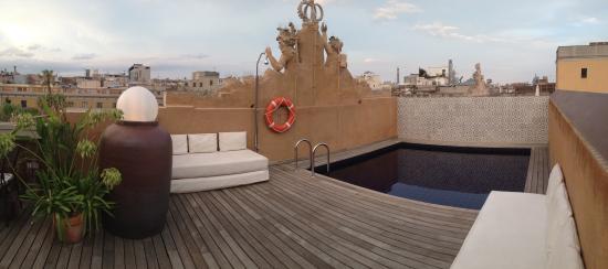 La Terrassa del DO: The small pool next to the tables.
