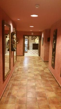 Salles Hotel & Spa Cala del Pi: отель