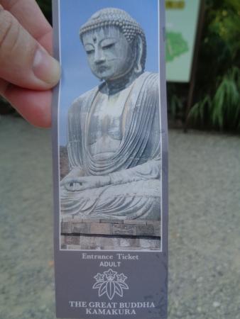 Kotoku-in (Great Buddha of Kamakura): The great buddha of Kamakura