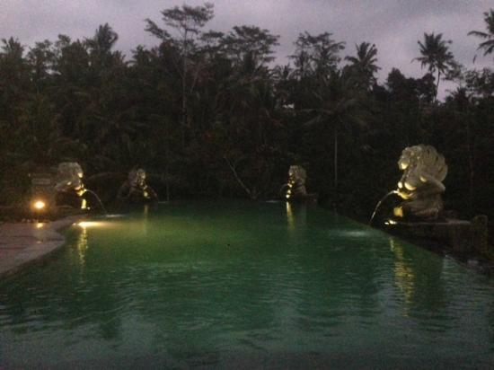 The Kayon Resort: Infinity Pool