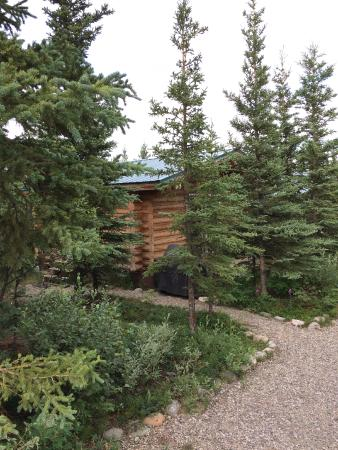 Park's Edge Log Cabins: Our cabin