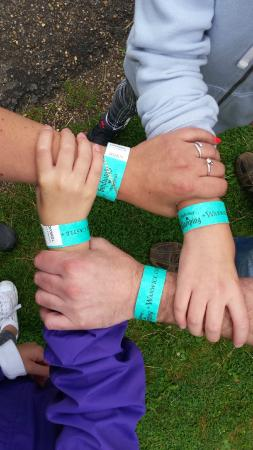 Warwick Castle: Wristbands