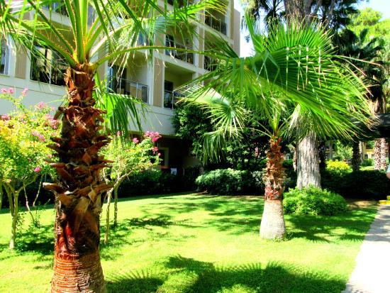 Turquoise Hotel: szálloda