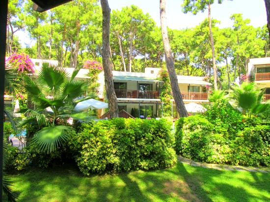 Turquoise Hotel: apartmanok