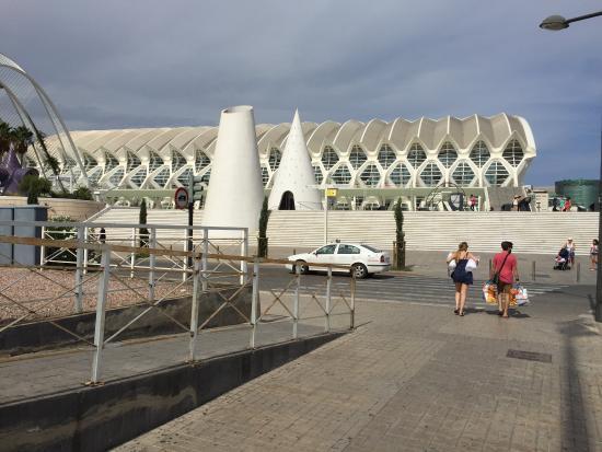 Oceanografic Valencia: Belíssimo. Um projeto arquitetônico fantástico e cheio de surpresas. Acesso fácil por transporte