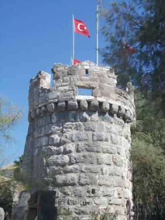 Castle of St. Peter: castello