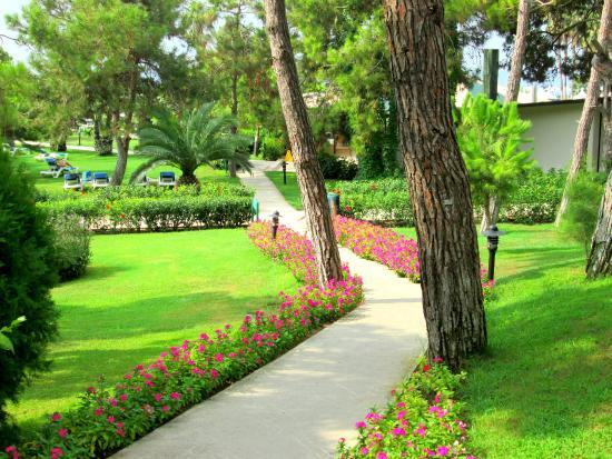 Turquoise Resort Hotel & Spa: út a tengerpartra