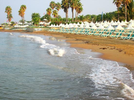 Turquoise Resort Hotel & Spa: tengerpart