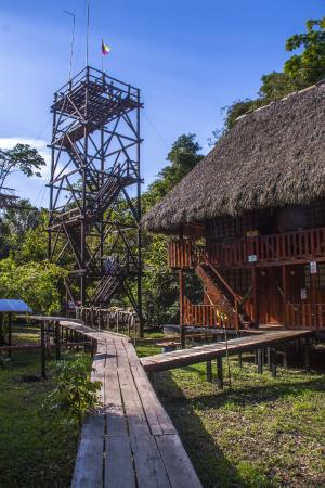 Guacamayo Ecolodge: Bird-watching tower