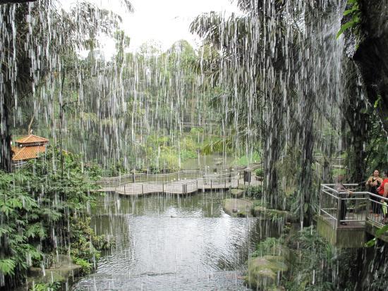 Kuala Lumpur Fuglepark: Lake