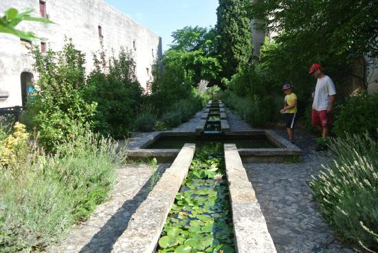 Chateau de Tarascon: le jardin