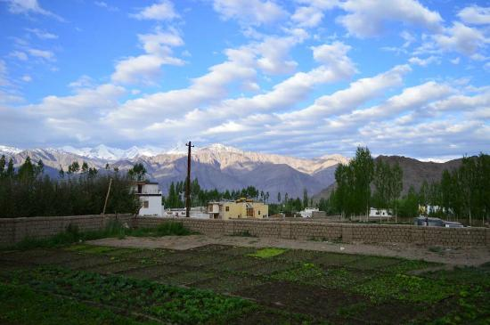 Adu's Eternal Comfort: View of the farm in front of the house and the mountains beyond
