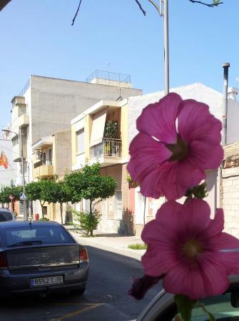 Bilde fra Guardamar
