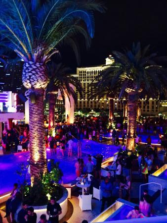 Drai's Nightclub: photo0.jpg
