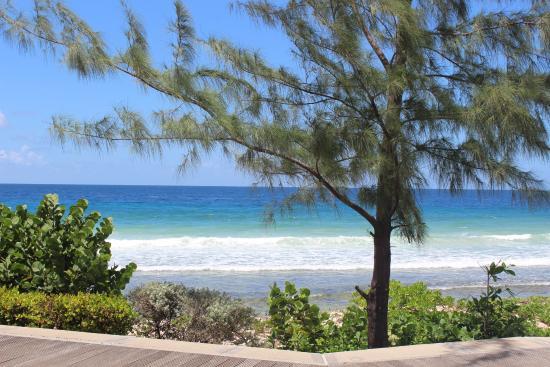South Coast Boardwalk: Stunning views
