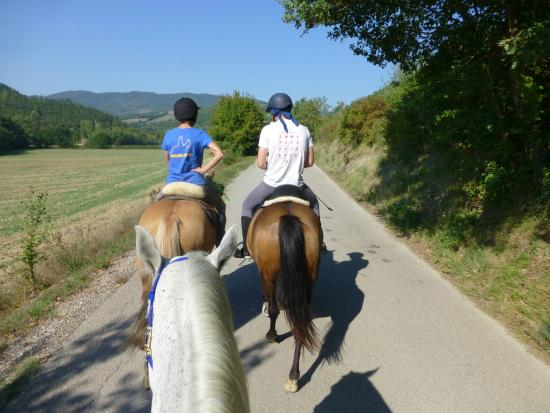 Centro di Equitazione Marana: A short ride along the road before a canter through a field