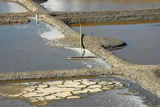 Salines de Millac: le marais salan