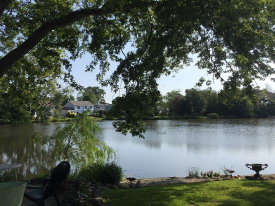 Walden on the Pond: photo0.jpg